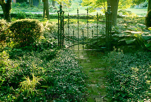 Wrought iron gate sits at entrance to garden with brick mossy covered path with vinca groundcover