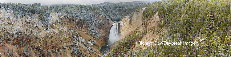 67545-09110 Lower Falls in fall, Yellowstone National Park, WY