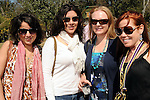 From left: Gisele Hayak, Nikki Olivarez, Tiffiny Williamson and Jessica Henry at the Beastly Brunch at the Houston Zoo Sunday Feb. 28,2010. (Dave Rossman Photo)