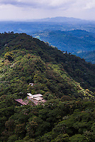 Ecuador. Mashpi Lodge, Choco Cloud Forest, a rainforest in the Pichincha Province of Ecuador, South America
