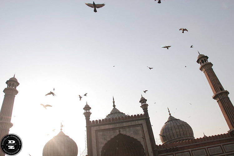 Pigeons fly over the Jama Masid mosque and the city of Delhi, India.  The mosque, the largest in India, was completed in 1658.  Photograph by Douglas ZImmerman