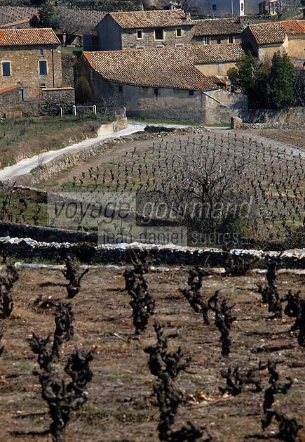 Europe/France/Languedoc-Roussillon/34/Hérault/Faugères : Maisons et vignes