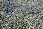 Yukon Scenic Aerial of Trees & Pond