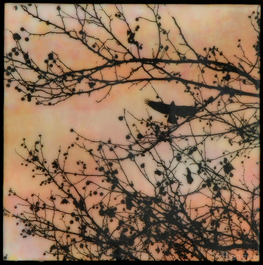 Mixed media photography and Encaustic painting in orange, gold, pink of bird in branch with berries