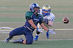2015 Reed at Damonte football
