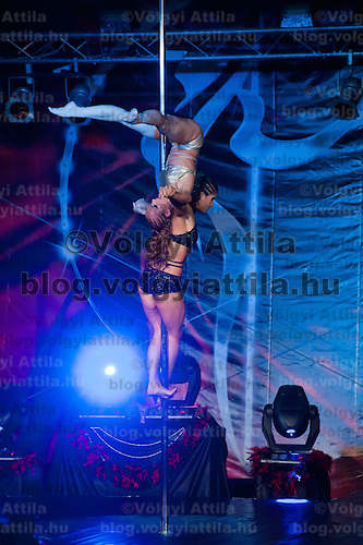 Ilka Martina Bardoczy and Barbara Palmaffy from Hungary compete in the doubles category during the World Pole Sport & Fitness Championships 2011 in Budaors, near Budapest, Hungary on October 01, 2011. ATTILA VOLGYI