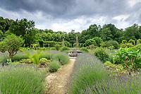 France, Loiret (45), Chilleurs-aux-Bois, château et jardins de Chamerolles, un carré du jardin renaissance, avec lavandes, buis en boules et bassin central