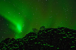 Northern Lights / Aurora Borelis