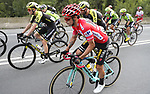 Race leader Primoz Roglic (SLO) Team Jumbo-Visma amongst the peloton during Stage 12 of La Vuelta 2019 running 171.4km from Circuito de Navarra to Bilbao, Spain. 5th September 2019.<br /> Picture: Luis Angel Gomez/Photogomezsport | Cyclefile<br /> <br /> All photos usage must carry mandatory copyright credit (© Cyclefile | Luis Angel Gomez/Photogomezsport)