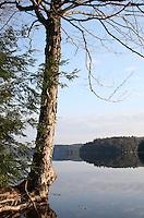 Big Hawk Lake Haliburton Ontario Canada with Mirror Surface