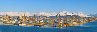 Homer boat harbor, Kenai mountains, Kenai Peninsula