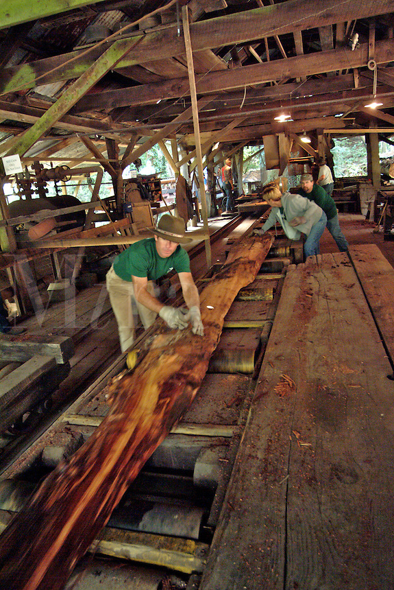 Saw mill workers are preparing to cut a large redwood log that has already been trimmed and squared on all four sides in an old saw mill in Occidental California