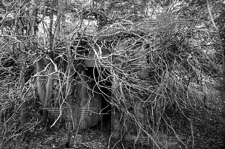 A concrete bunker used by the German Army in World War II is barely visible beneath a tangel of branches and weeds near Wissant, France, along the route of the Atlantic Wall (Atlantikwall in German).The Atlantic Wall (or Atlantikwall in German) was a system of defensive structures built by Nazi Germany between 1942 and 1945, stretching over 1,670 miles (2,690 km) along the coast from the North of Norway to the border between France and Spain at the Pyrenees. The wall was intended to repulse an Allied attack on Nazi-occupied Europe and the largest concentration of structures was along the French coast since an invasion from Great Britain was assumed to be most likely. Slave labour and locals paid a minimum wage were drafted in to supply much of the labour. There are still thousands of ruined structures along the Atlantic coast in all countries where the wall stood except for Germany, where the bunkers were completely dismantled.