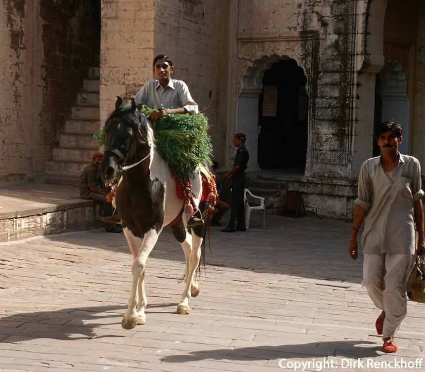Indien, Reiter in Jodhpur (Rajasthan).