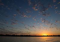 Sunrise in the Pantanal.