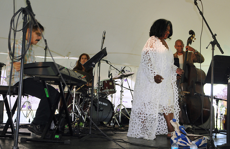 Jazz Vocalist, Melba Joyce, performing, at the 2014 Jazz in the Valley Festival held in Waryas Park on the Hudson River front in Poughkeepsie, NY on Sunday August 17, 2014. Photo by Jim Peppler. Copyright Jim Peppler 2014 all rights reserved.
