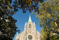 Canada, Montreal, Saint Patricks Cathedal, church steeple with trees