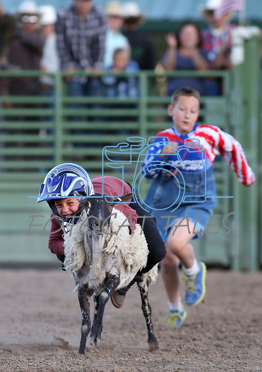 Michael Valerie, of Reno, competes in the Mutton Bustin' portion of the Smackdown Tour Bull Riding event at Fuji Park in Carson City, Nev., on Saturday, June 7, 2014.<br /> Photo by Cathleen Allison