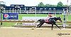 Peaceluvncupcakes winning at Delaware Park racetrack on 6/23/14