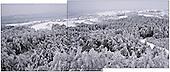 Niegowa 01.2010 Poland<br /> View from the silo to the frozen and icy woods.<br /> Three atmospheric forces: rain, snow and frost have changed into an ecological disaster the Myszkowski district in the Czestochowskie province, located 230 kilometers south of Warsaw. Almost 95% of all trees are down.Thousands of homes are left without electricity.<br /> Photo: Adam Lach / Napo Images for Newsweek Polska<br /> <br /> Widok z silosu na zamarzniete i zlodowaciale lasy.<br /> Wstepnie &quot;tylko&quot; 95% scietych drzew w dwoch powiatach. 0.5 miliona metrow szesciennych zniszczonych lasow..Tysiace gospodarstw bez pradu. Wszyscy maja swiadomosc, ze na kumulacje trzech niekorzystnych .zjawisk atmosferycznych rady nie ma.Trzy zjawiska kt&oacute;re zamienily jeden z obszarow Polski w istna katastrofe ekologiczna: deszcz, snieg i szadz.<br /> Fot: Adam Lach / Napo Images dla Newsweek Polska