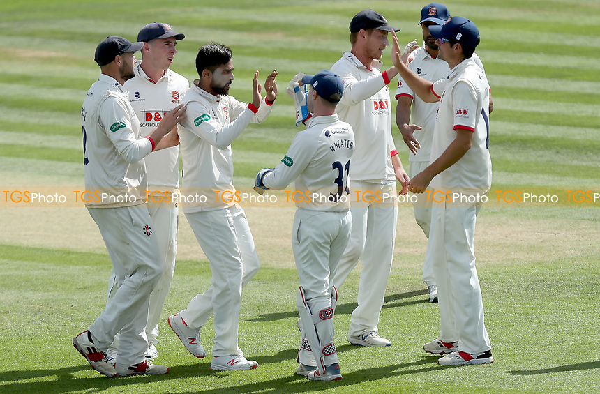 Mohammed Amir of Essex celebrates taking the wicket of Daniel Bell-Drummond during Kent CCC vs Essex CCC, Specsavers County Championship Division 1 Cricket at the St Lawrence Ground on 20th August 2019
