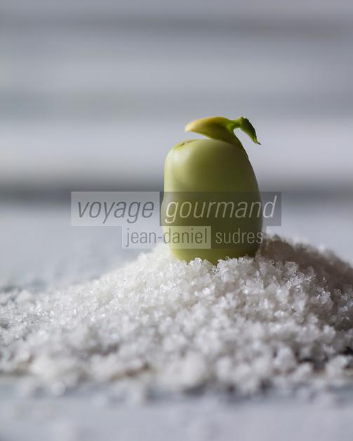 Gastronomie Générale: Fève  crue à la croque au sel - Stylisme : Valérie LHOMME // Gastronomy:  Beans   (food stylist Valerie LHOMME)