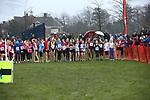 2013-12-15 Holly Run 03 AB u13G