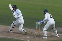 Tom Westley in batting action for Essex during Nottinghamshire CCC vs Essex CCC, Specsavers County Championship Division 1 Cricket at Trent Bridge on 13th September 2018