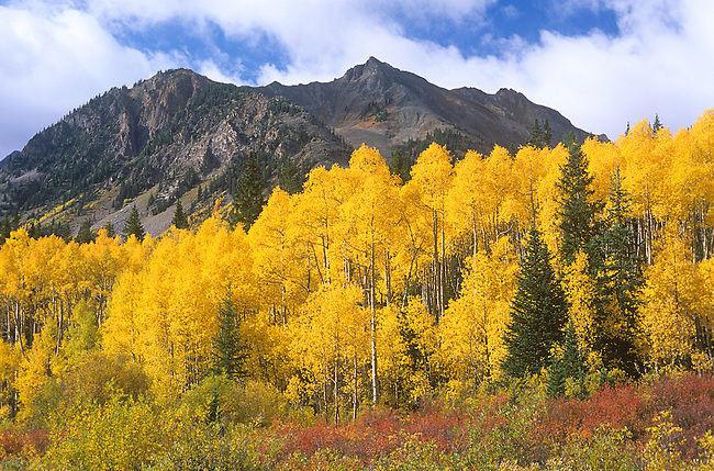 Autumn, Pearl Pass, Elk Mountains, Colorado