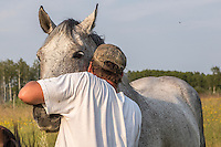 Yves Breton tends to one of his Clydesdale horse on his farm in Saint-Laurent, Manitoba, Friday August 14, 2015. The Clydesdale is a breed of draft horse derived from the farm horses of Clydesdale, Scotland, and named after that region.