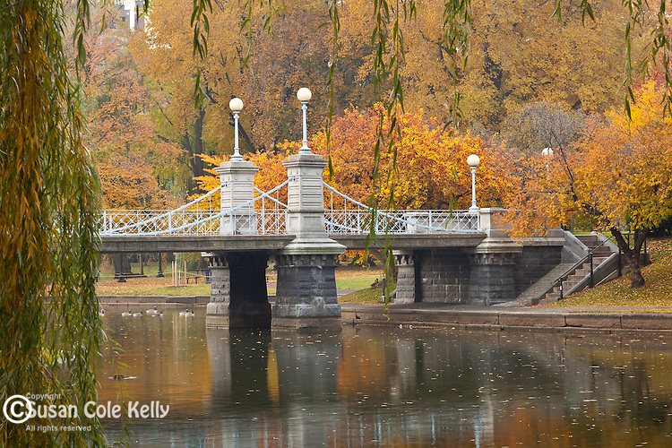 Fall foliage in the Boston Public Garden, Boston, MA, USA