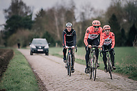 Sep Vanmarcke (BEL/Education First-Drapac) at Carrefour de l'arbre<br /> <br /> parcours recon of the 116th Paris-Roubaix 2018, 3 days prior to the race