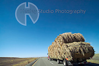 Americana Series: Road Trip<br />