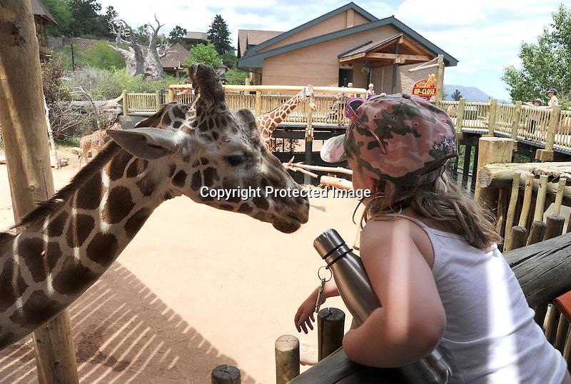 Young Girl Talking with Giraffe at Cheyenne Mountain Zoo, Colorado, USA