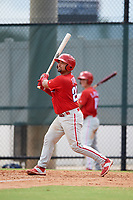 Philadelphia Phillies catcher Colby Fitch (22) follows through on a swing during an Instructional League game against the Toronto Blue Jays on September 30, 2017 at the Carpenter Complex in Clearwater, Florida.  (Mike Janes/Four Seam Images)