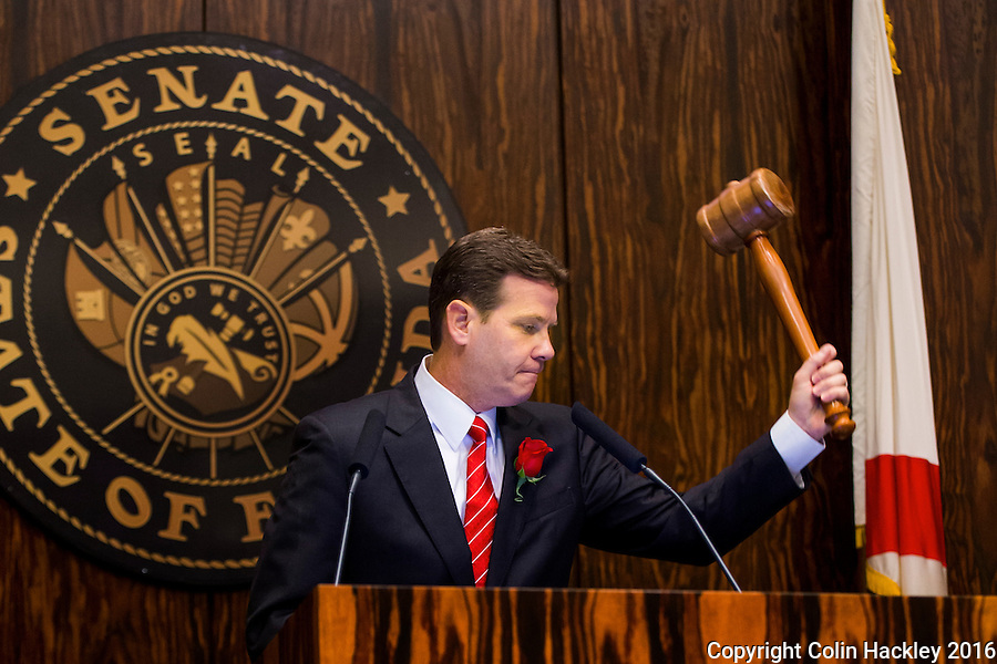 TALLAHASSEE, FLA. 1/12/16-Senate President Andy Gardiner, R-Orlando, gavels his chamber to order to signal the start of the 2016 legislative session, Tuesday at the Capitol in Tallahassee.<br /> <br /> COLIN HACKLEY PHOTO
