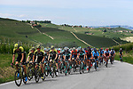 The peleton with Mitchelton-Scott on the front during Stage 18 of the 2018 Giro d'Italia, running 196km from Abbiategrasso to Prato Nevoso, Italy. 24th May 2018.<br /> Picture: LaPresse/Fabio Ferrari | Cyclefile<br /> <br /> <br /> All photos usage must carry mandatory copyright credit (&copy; Cyclefile | LaPresse/Fabio Ferrari)