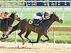 Swinger's Party winning at Delaware Park on 9/24/12