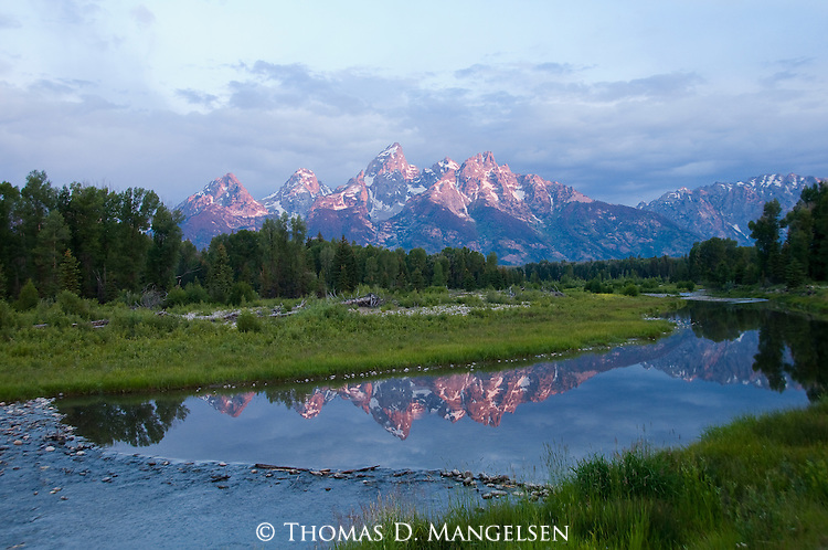 Sunrise tints the peaks of the Tetons as they reflect in the river below at Schwabachers Landing in Grand Teton National Park, Wyoming.
