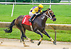 Manando winning at Delaware Park on 6/16/16