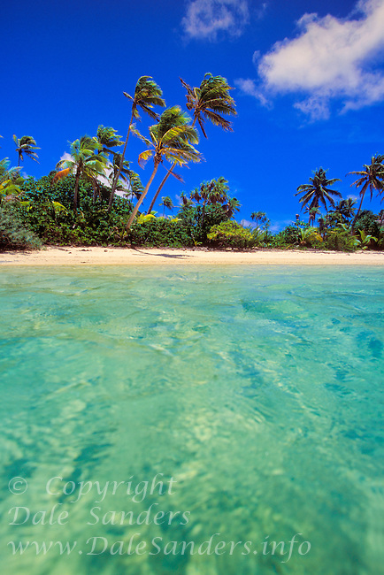 View of beach from water, on an unihabited island in Aitutaki Lagoon, Cook Islands in the South Pacific.