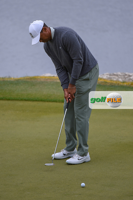 Tiger Woods (USA) watches his par putt on 11 during day 4 of the WGC Dell Match Play, at the Austin Country Club, Austin, Texas, USA. 3/30/2019.<br /> Picture: Golffile   Ken Murray<br /> <br /> <br /> All photo usage must carry mandatory copyright credit (© Golffile   Ken Murray)