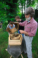 "Ron Breland, 64 years old, in his experimental garden opening a hive of his design with his students. In 2000, after losing half his hives, Ron starting creating five-sided hives, for him closer to the natural habitat of bees. ""I'm not looking to produce honey. I raise bees for the pleasure and to preserve the species which is today in danger because of the use of pesticides, monoculture and certainly also due to the beekeepers who exploit the bee in an industrial manner""."