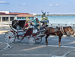 Cienfuegos horse-drawn taxi for tourists