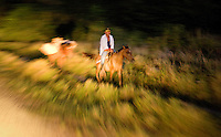 A man passes on a horse during the morning hours of a 6 hour bus ride back to Managua from the Bluefields and the Atlantic Coast in April, 2009..
