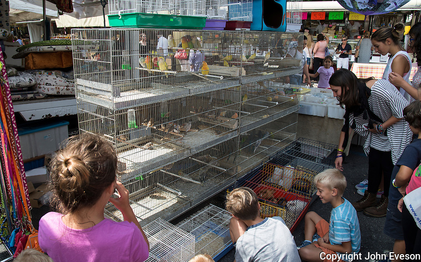 Pet stall at Iseo, Lake Iseo, Lombardy, Italy.