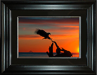 Image Size:  16&quot; x 24&quot;<br />