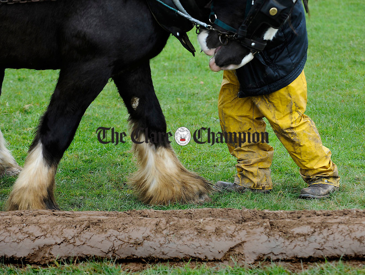 Man and beast working together at the Clare Ploughing Association's county championships at Newmarket On Fergus. Photograph by John Kelly.