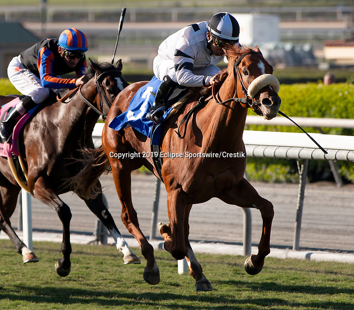 ARCADIA, CA: October 06: #3 Warren's Showtime with jockey Jorge Velez wins the Surfer Girl Stakes at Santa Anita Park on October 06, 2019 in Arcadia, California (Photo by Chris Crestik/Eclipse Sportswire)