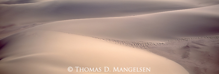 A sand dune on the Skeleton Coast of Namibia.